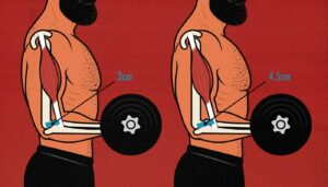 Diagram showing how our muscle insertions affect our strength.